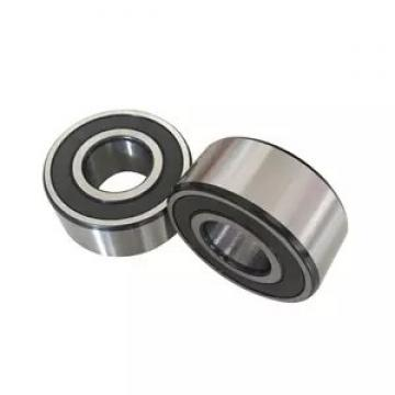 INA AS80105  Thrust Roller Bearing