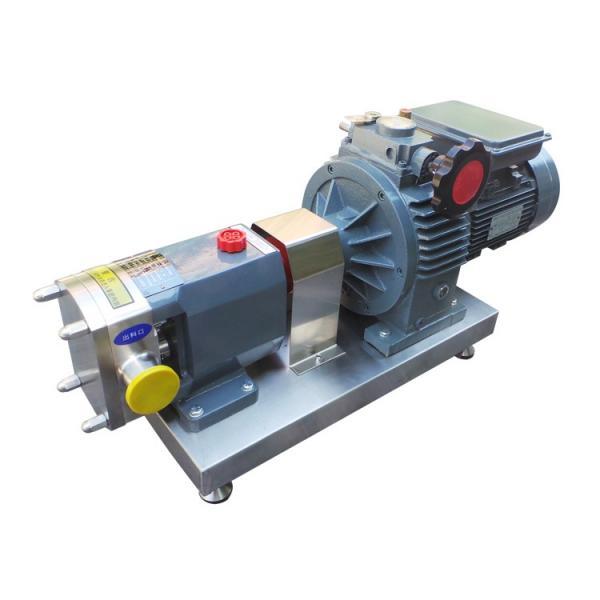 Parker PAV6.3 Piston Pump #2 image