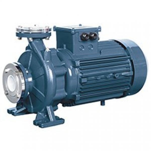 Parker PV140 R1K1T1NMMC Piston Pump #1 image