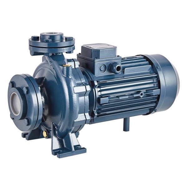 Parker PV080 R1K1T1NMMC Piston Pump #1 image