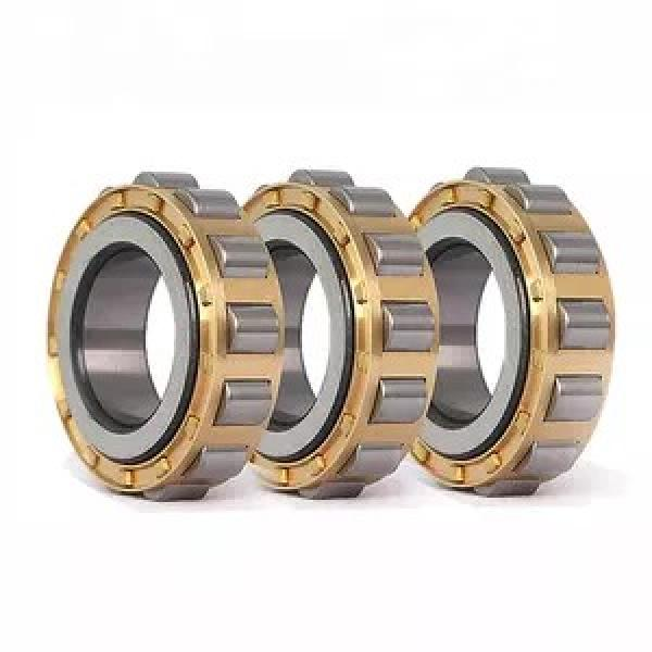 220 mm x 400 mm x 65 mm  FAG NUP244-E-M1  Cylindrical Roller Bearings #1 image